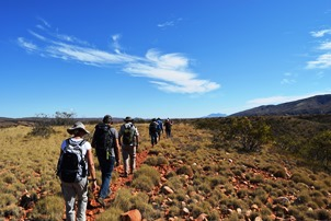 6 Day Larapinta Traiil Trek