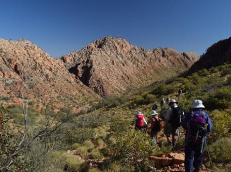 Larapinta Trail